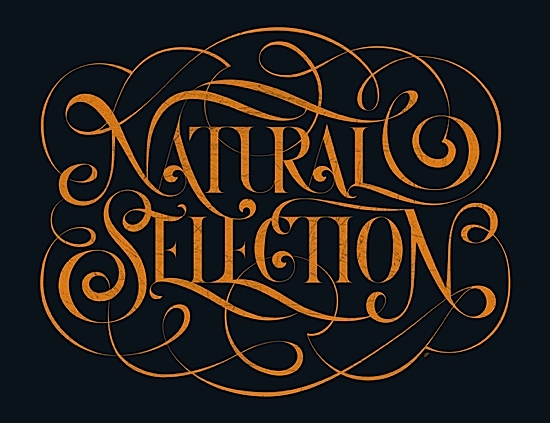 Picture-3 ( 25 Awesome and Creative Typography Graphic Designs for your inspiration )